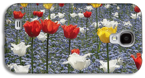 Spring  Colour Galaxy S4 Case by Paul Felix