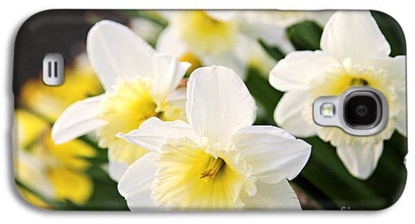 Spring Daffodils Galaxy S4 Case by Elena Elisseeva