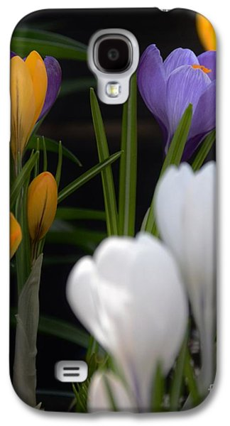 Spring Glow Galaxy S4 Case by Kathleen Struckle