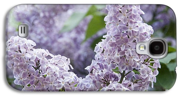 Spring Lilacs In Bloom Galaxy S4 Case