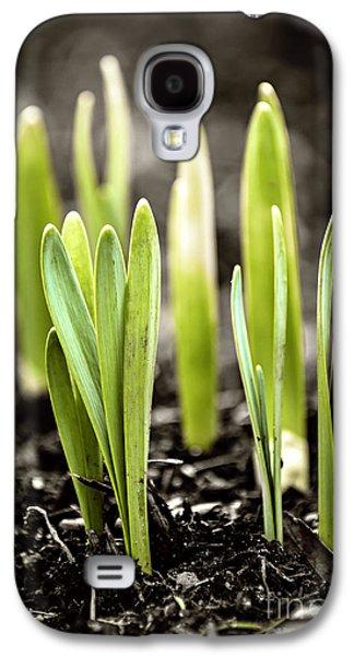 Spring Shoots Galaxy S4 Case by Elena Elisseeva