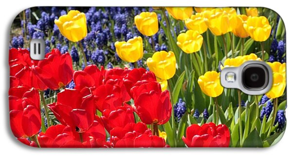 Spring Sunshine Galaxy S4 Case