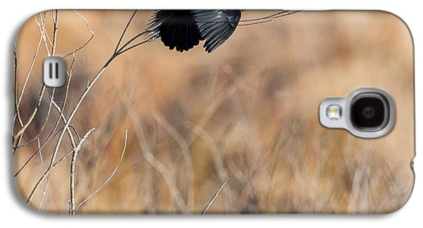 Springtime Song Square Galaxy S4 Case by Bill Wakeley