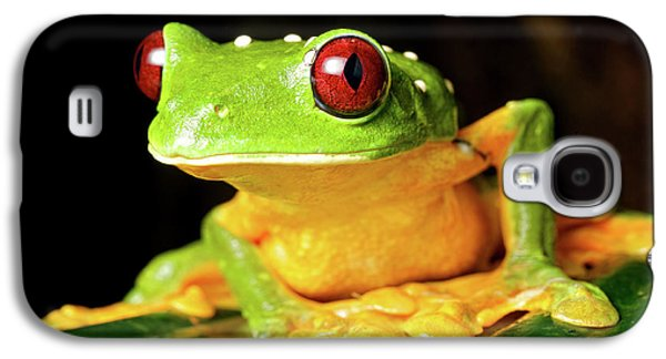 Spurell's Flying Frog (agalychnis Galaxy S4 Case by Andres Morya Hinojosa