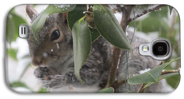 Squirrel In Snow 1 Galaxy S4 Case by Linda L Martin
