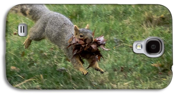 Squirrel Nest Bulding Galaxy S4 Case by Robert Bales