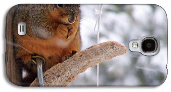 Squirrel Snack II Galaxy S4 Case