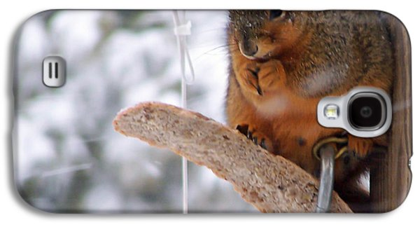 Squirrel Snack IIi Galaxy S4 Case