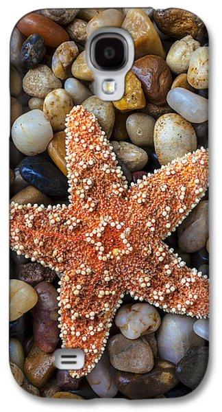 Starfish On Rocks Galaxy S4 Case by Garry Gay