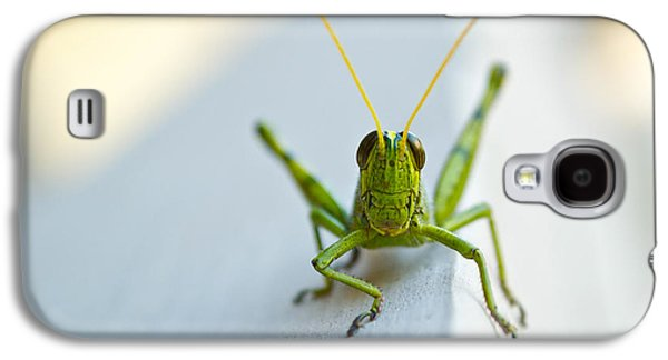 Staring At Me Galaxy S4 Case by Shelby  Young