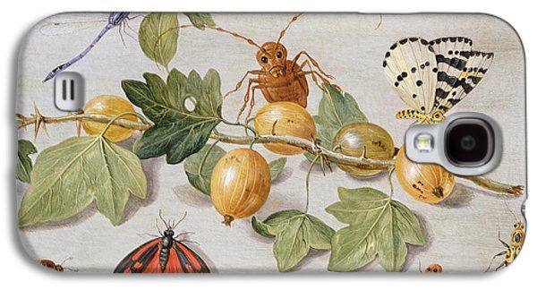 Still Life Of Branch Of Gooseberries Galaxy S4 Case by Jan Van Kessel