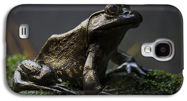 Stone Galaxy S4 Case