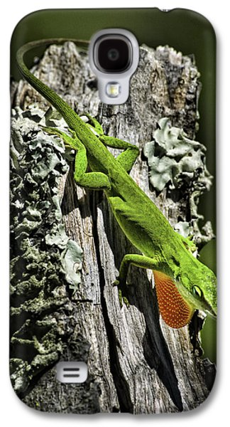 Stressed Anole Galaxy S4 Case