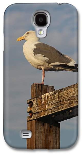 Strike A Pose Galaxy S4 Case by Deana Glenz