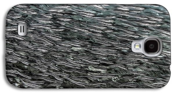 Striped Catfish Galaxy S4 Case