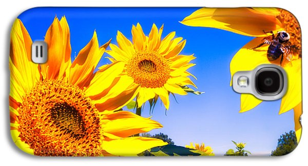 Summertime Sunflowers Galaxy S4 Case by Bob Orsillo