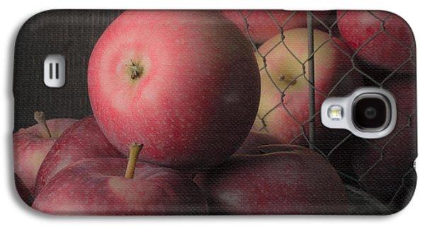 Sun Warmed Apples Still Life Square Galaxy S4 Case by Edward Fielding
