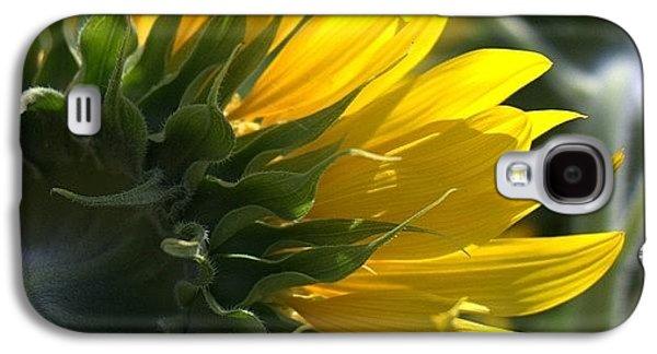 Colorful Galaxy S4 Case - #sunflower #closeup by Georgia Fowler