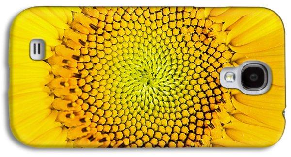 Sunflower Galaxy S4 Case - Sunflower  by Edward Fielding