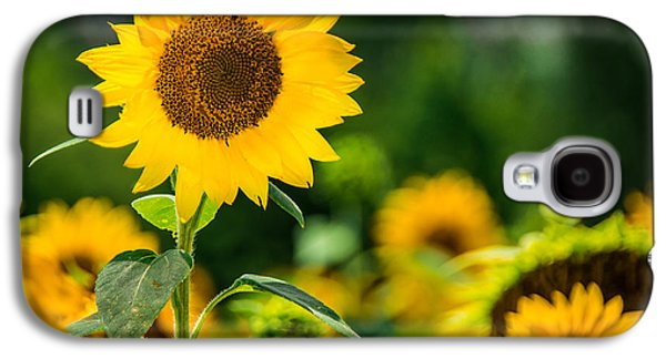 Sunflower Galaxy S4 Case by Jon Woodhams