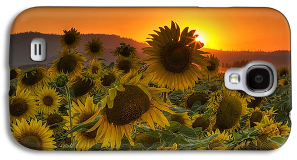 Sunflower Sun Rays Galaxy S4 Case by Mark Kiver