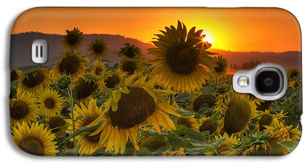 Sunflower Sun Rays Galaxy S4 Case by Mark Kiver