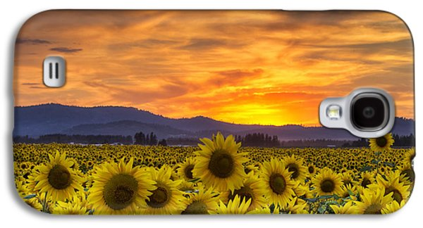 Sunflower Sunset Galaxy S4 Case by Mark Kiver