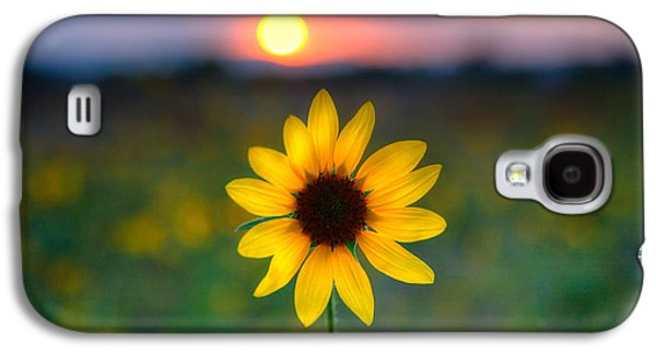 Sunflower Galaxy S4 Case - Sunflower Sunset by Peter Tellone
