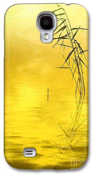 Sunlight Galaxy S4 Case by Veikko Suikkanen