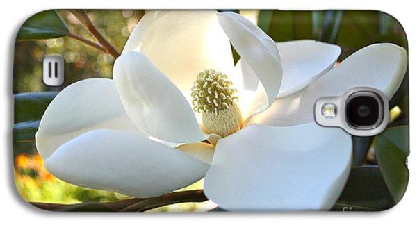 Sunlit Southern Magnolia Galaxy S4 Case by Carol Groenen