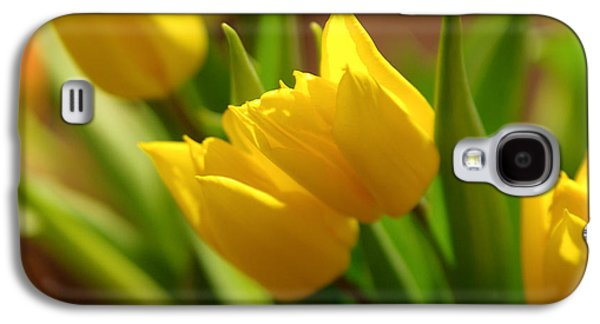 Sunny Tulips Galaxy S4 Case by Erin Kohlenberg