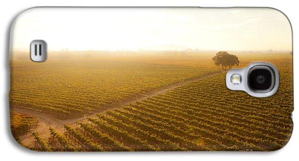 Sunrise Over The Vineyard Galaxy S4 Case by Diane Diederich