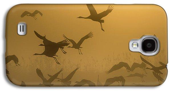 Crane Galaxy S4 Case - Sunrise With Cranes by Ronen Rosenblatt