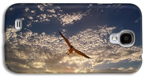 Sunset Gull Galaxy S4 Case