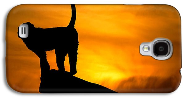 Monkey / Sunset Galaxy S4 Case