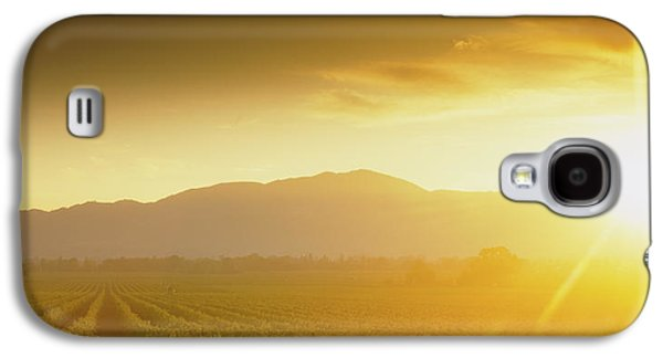 Sunset Over Vineyard, Napa Valley Galaxy S4 Case by Panoramic Images