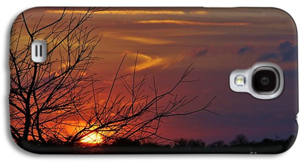 Sunset Through The Branches Galaxy S4 Case