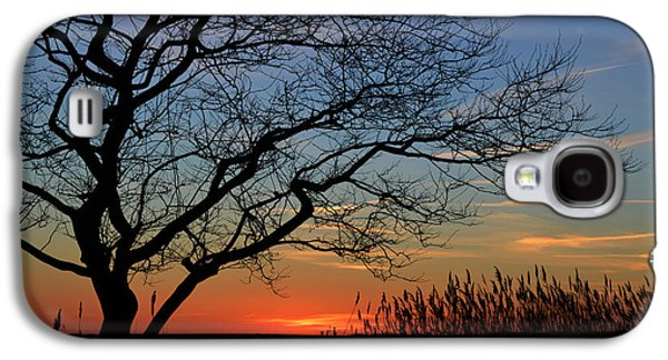 Sunset Tree In Ocean City Md Galaxy S4 Case