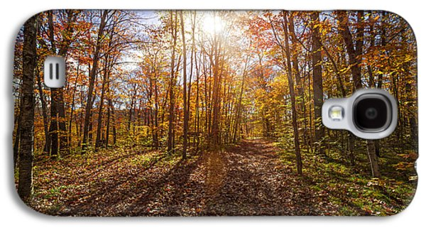 Sunshine In Fall Forest Galaxy S4 Case