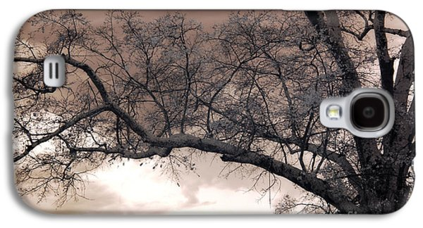Surreal Fantasy Gothic South Carolina Oak Trees Galaxy S4 Case by Kathy Fornal
