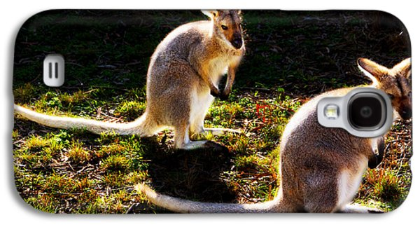 Red-necked Wallabies Galaxy S4 Case