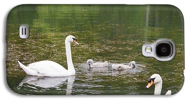 Swan Family Squared Galaxy S4 Case by Teresa Mucha