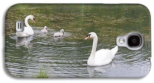 Swan Family Galaxy S4 Case by Teresa Mucha