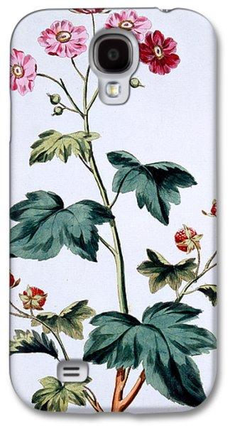 Sweet Canada Raspberry Galaxy S4 Case by John Edwards