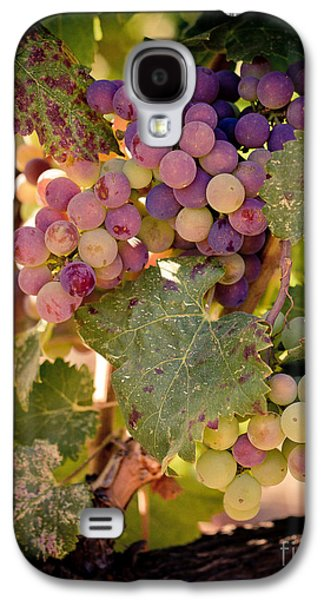 Sweet Grapes Galaxy S4 Case