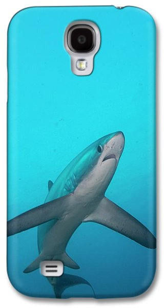 Sharks Galaxy S4 Case - Swimming Thresher Shark by Scubazoo