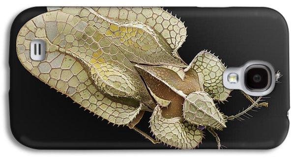 Sycamore Lace Bug Sem Galaxy S4 Case