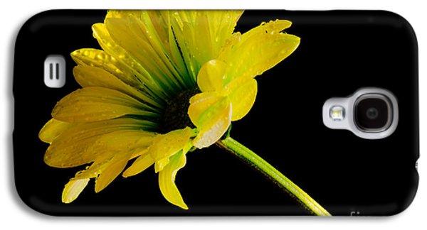 Table Top Macro Galaxy S4 Case