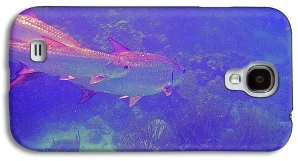 Tarpon Reef Galaxy S4 Case