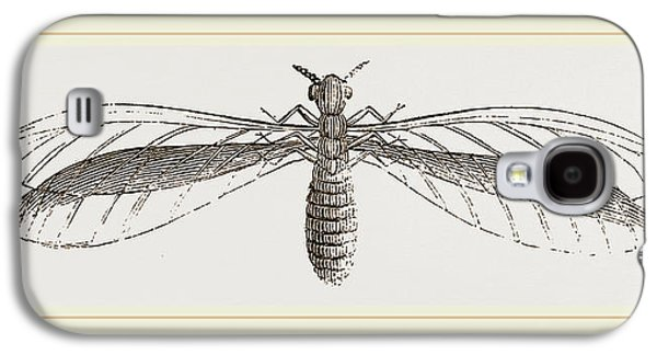 Termes Bellicosus In Winged State Galaxy S4 Case